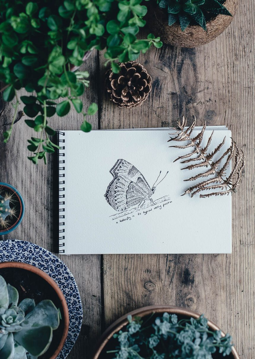 I Swear I Saw This: Drawings in Notebooks